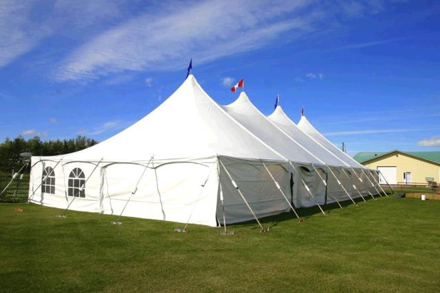 Where to find TENT, 40  X 100 POLE in Regina